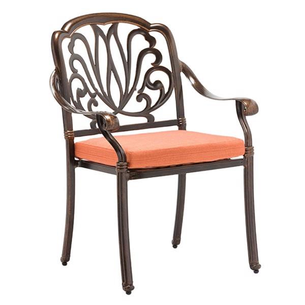 Ghế Sân Vườn, ghế ngoài trời, ghế cafe Nhập Khẩu Có Tay TVP-SV06